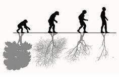 Funny pictures about The Advance Of Human Evolution. Oh, and cool pics about The Advance Of Human Evolution. Also, The Advance Of Human Evolution photos. Salve A Terra, Man Vs Nature, Human Nature, Art Environnemental, Save Our Earth, Human Evolution, Evolution Tattoo, Cultural, Environmental Art