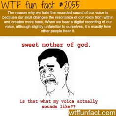 Why do we hate our own voice? - WTF fun facts