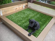 For a City Dog: DIY Porch Potty for dogs and puppies, makes clean up easy. Indoor Dog Potty, Porch Potty, Indoor Dog Area, Diy Porch, Training Your Puppy, Potty Training, Training Dogs, Animal Projects, Diy Projects