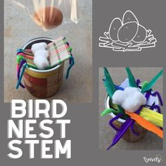 For an outdoor spring STEM activity, try the Bird Nest engineering challenge! The mission: design a nest to safely catch a falling egg! Follow-up the activity with a challenge teaching the concept of biomimicry. #spring #stemchallenge #stemactivity #STEM #STEMeducation #STEMed Math Games For Kids, Fun Math Activities, Engineering Design Process, Stem Challenges, Math Lessons, Teaching, Bird, Education, Birds
