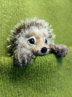 So cute - needle felted hedgehog