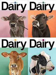Google Image Result for http://www.roughstockstudios.com/uploaded_images/Dairy-Today-Magazine-Cover-Design.jpg