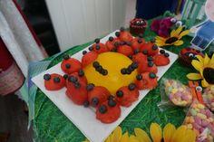 Ladybird fruit