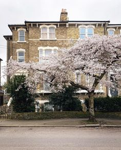 Skye 📍 London (@skyeoneill) • Instagram-bilder og -videoer London, Mansions, House Styles, Outdoor, Instagram, Home Decor, Outdoors, Decoration Home, Manor Houses