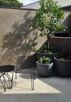Design an aesthetically pleasing terrace Modern Landscape Design, Modern Landscaping, Outdoor Landscaping, Outdoor Plants, Outdoor Rooms, Outdoor Gardens, Small City Garden, Rooftop Design, Small Balcony Design