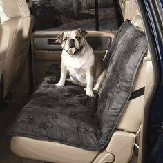 Cruising Companion Pawprint Single Car Seat Cover Camel 1