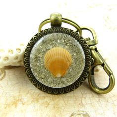 Scallop Seashell Keychain / Purse Charm / by FloridaShellGirlShop