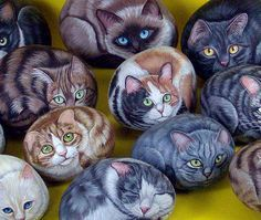 Painted Rocks. Great idea to paint a cat!. Please also visit www.JustForYouPropheticArt.com for colorful inspirational Prophetic Art and stories. Thank you so much! Blessings!