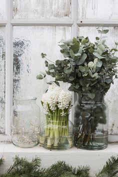 Dekorera med julblommor – fina tips | ELLE Decoration