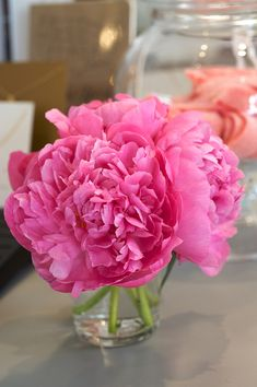 Pink peonies, a springtime essential at Dabney Lee's studio. (Photography: Carol Dronsfield)