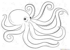 How to Draw an Octopus School Science Ocean Study