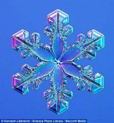 Hermosas fotos de copos de nieve y ¿cómo se forman? | Curiosidades