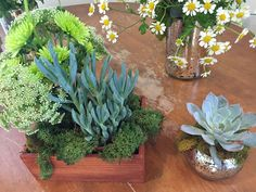 Earthy and whimsical. Wood and mercury glass. Succulents and feverfew.