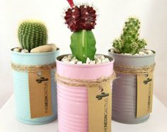 beer can hanging planters - Google Search