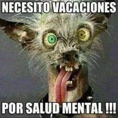 Las necesito YA!! Imagenes de risa 2016 Mega Memeces Más en I➨ http://www.megamemeces.com/memeces/imagenes-de-risa-2016