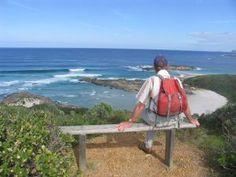 Bibbulmun Track Denmark Western Australia Vivid Colors, Colours, Western Australia, Hiking Trails, Denmark, Scenery, Track, Country, Amazing
