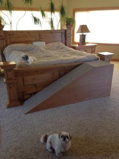 Pet stairs diy dog ramp puppys Ideas for 2019 Dog Ramp For Stairs, Dog Steps For Bed, Dog Ramp For Bed, Pet Ramp, Pet Stairs For Bed, Dog Furniture, Furniture Removal, Furniture Stores, Dog Rooms