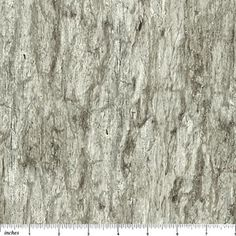 Stonehenge Woodland - Winter By Linda Ludovico Coming to stores August, 2012