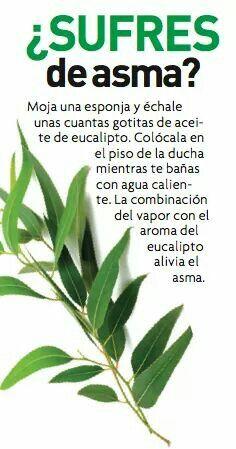 Asma #remediosasma