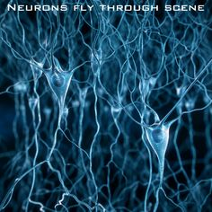 Medical visualization, brain synapses, neurons fly trough animation, 3D stock media available on http://www.cgtrader.com/iterateCGI