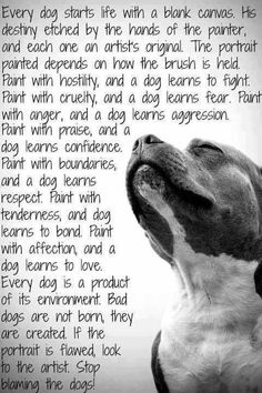 """""""Every dog is a product of its environment""""! ❤"""