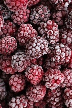 Frosted Raspberries ....