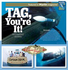 Marlin Magazine, sailfish, conservation, charter boat, offshore fishing, pacific ocean