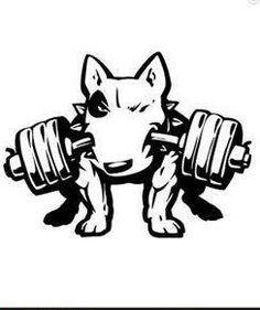 ebt gym