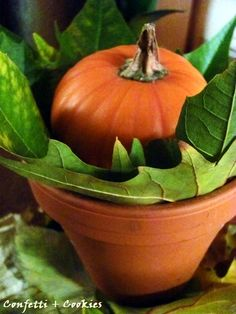 5-minute Fall table decoration - perfect for seasonal party or Thanksgiving