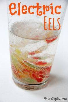 Eels Electric Eels Science Experiment for Kids {Watch gummy worms seem to come alive and jump around in the glass!}Electric Eels Science Experiment for Kids {Watch gummy worms seem to come alive and jump around in the glass! Kid Science, Preschool Science, Science Fair, Teaching Science, Summer Science, Forensic Science, Stem Science, Computer Science, Rainforest Preschool
