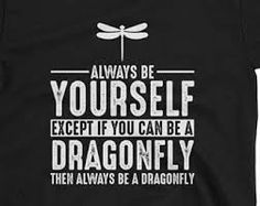 Image result for dragonfly t-shirt