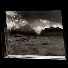 Sepia tones-Adrian Davis