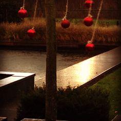 Herfstdagen voor kerstmis, zonsopkomst met veel wind en regen.