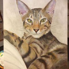 This is Meelah! Commission by Exnihilo art & design by Hazel Keys Red Deer, Pet Portraits, Make Me Smile, Keys, Original Art, Princess Zelda, Slim, Watercolor, Creative