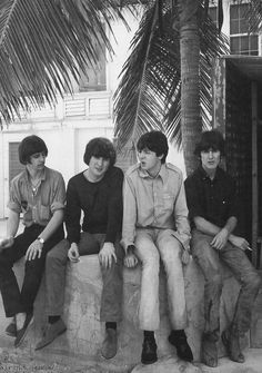 The Beatles 1965