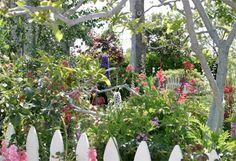butterfly gardening info