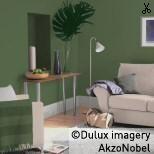 Using Dulux Flamingo Fun 1 - Living Room Paint Color Palettes, Paint Colors, Forest Falls, Paint Color Chart, Dulux Paint, Teal Walls, Accent Walls, Accent Chairs, Latest Colour