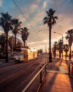 No trip to Melbourne is complete without a tram ride to St Kilda at golden hour ✨ Escape the city hustle & recharge amongst the palm trees. Melbourne Tram, Places In Melbourne, Melbourne Florida, Melbourne Australia, Melbourne Tourism, Melbourne Weather, Melbourne Suburbs, Sydney Australia, Western Australia