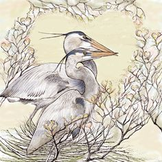TW66 - Two Herons greeting card
