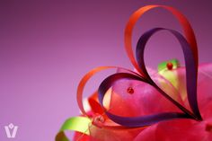 Met moederdag in het vooruitzicht dit mooie strik idee voor jullie! Gemaakt van silky krullint te koop via www.cadeaupapier.com. Copyright Veldhuis Mooi Cadeaupapier. #giftpaper #decoration #DIY #giftwrapping #spring #cadeaupapier #decoratie #knutselen #inpakken #moederdag #liefde #mothersday #love