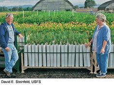 "PVC Garden ""Pots"" -- On b organic with michele beschen episode #212, a CSA had lots of unique planting methods that were inexpensive, deer- & weed-proof, AND accessible to someone in a wheelchair. PVC pipe (10' lengths) cut into 3 equal pieces, secured in the ground with a piece of rebar, and filled it with soil were used to plant all sorts of vegetables and plants, 1 plant per ""pot"". Each plant took just one cup of water per day to thrive! Here is a similar idea on a DOT government website."