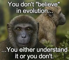 """Very true, considering that religious views are called 'beliefs' since they're based on """"faith alone"""" as the bible states. So, there is no 'belief' of science since it is cold hard facts, there is only understanding."""