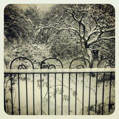 Snowy railings.