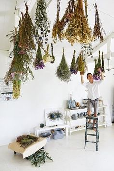 May 2019 - dried flower bouquets hanging from ceiling / an inventive way to style dead flowers Dried Flower Bouquet, Dried Flowers, Flower Bouquets, How To Dry Flowers, Deco Pizzeria, Dried Flower Arrangements, Hanging Flowers, Hanging Plants, Flower Making