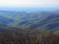 Overlook on the Valley from Reddish Knob. <3 love my mountains