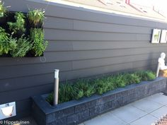 Douglas fir pot fence Anthracite and . Backyard Retreat, Backyard Landscaping, Garden Cottage, Home And Garden, Garden Borders, Garden Pool, Back Gardens, Trees To Plant, Garden Inspiration