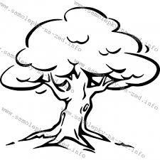 Výsledok vyhľadávania obrázkov pre dopyt strom