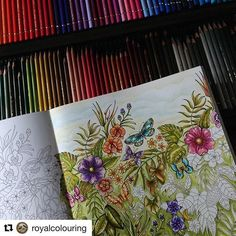 #Repost @royalcolouring with @repostapp ・・・ Wish you all a wonderful weekend . WIP; Magical Jungle still in love with my #fabercastellpolychromos #johannabasford #magicaljungle #colouringbooks #magicaljunglecoloringbook #adultcolouring #arteterapia #artecomoterapia #jardimsecreto #jardimsecretotop #colorindolivros #coloring_secrets #coloring_masterpieces #coloringmasterpiece #lostoceancolors #desenhoscolorir#colorindolivrostop#colorindomeujardimencantado #desenhoscolorir#beautifulcolori...