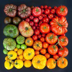 Aliments - Tomates - Classement - Couleurs - Arrangements - Emily Blincoe
