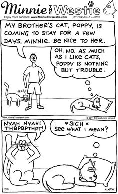 Cats 'n' dogs, eh... this Minnie The Westie cartoon is great! Love the look on Minnie's face :)